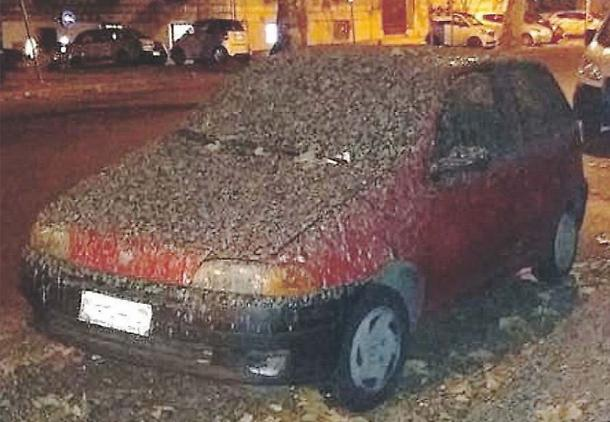 Er Pluridecorato da Ostia all'autolavaggio